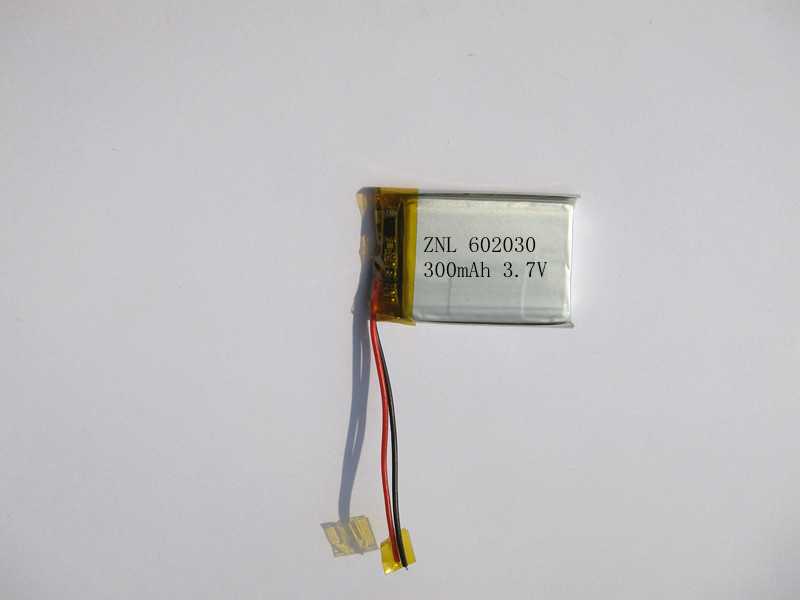 Point reading pen polymer battery